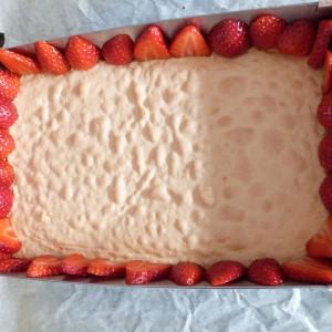 fraisier léger ELLE (21)