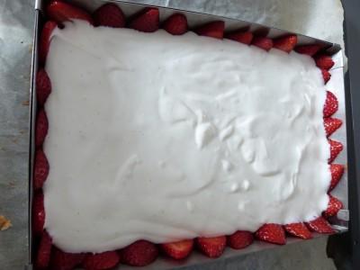 fraisier léger ELLE (27)