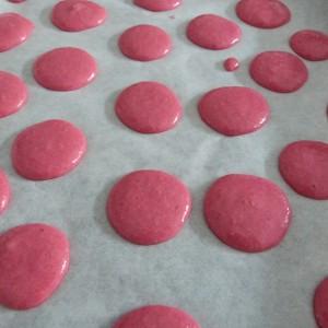 macarons framboise (6)