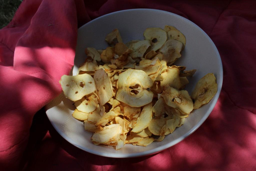Déshydrateur pommes natures (4)